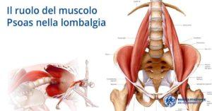 Il ruolo del muscolo Psoas nella lombalgia riabilitazione campania