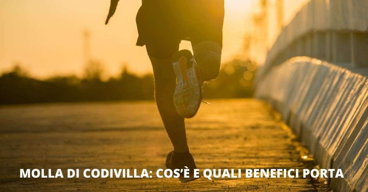 Molla di Codivilla cos'è e quali benefici porta